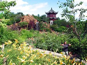 Photographies19 jardin chinois for Jardin chinois miniature
